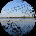 waterloo preserve