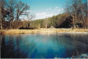 Little Pond on Farm