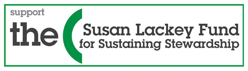 Susan Lackey Fund