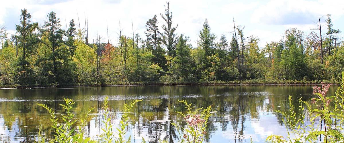 Reichert lake_web slider