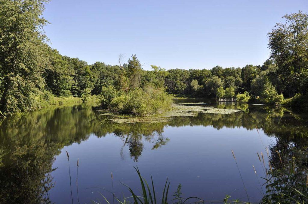 Reichert Nature Preserve