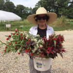 Late-summer reflections from a flower farmer