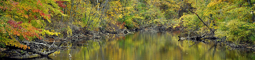 fall-on-the-huron_barbara-michniewicz_webpage-header