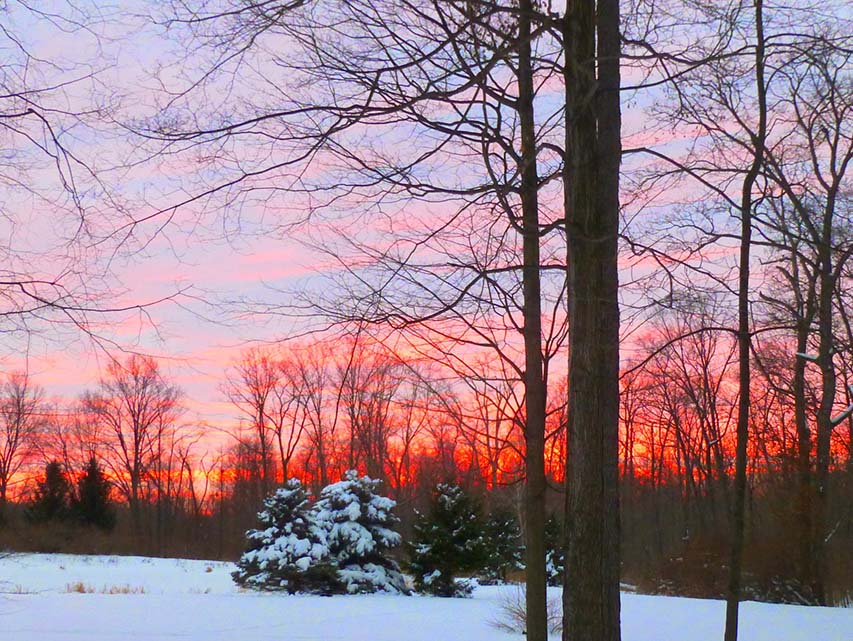 A winter sunset Dave and Cathy enjoyed from their woods. Photo by Dave Foster.
