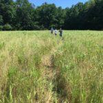 Stewardship Crew Ready for Field Work
