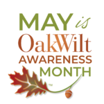 May Is Oak Wilt Awareness Month